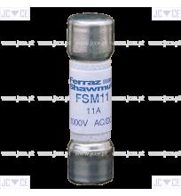 FSM11
